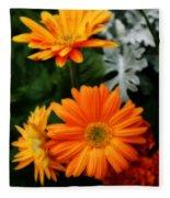 Tangerine Colored Gerbera Daisies Fleece Blanket