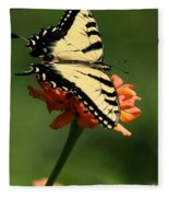 Tantalizing Tiger Swallowtail Butterfly Fleece Blanket