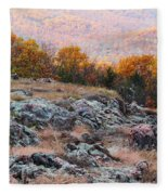 Taum Sauk Mountain Glade I Fleece Blanket