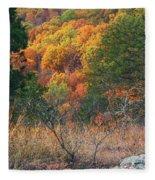 Taum Sauk Mountain Glade IIi Fleece Blanket