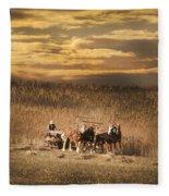 Team Of Four Horses Fleece Blanket