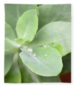 Tears Of Raindrops Fleece Blanket