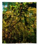 Temperate Rain Forest Fleece Blanket