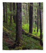 Temperate Rain Forest, Carmanah-walbran Fleece Blanket