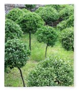 Temple Garden Trees Fleece Blanket