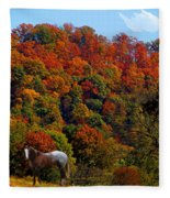 Tennessee Fall Fleece Blanket