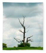 Tennessee Lone Tree Fleece Blanket
