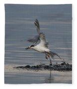 Tern Emerging With Fish Fleece Blanket