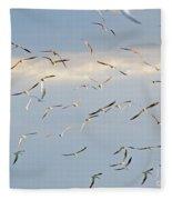 Terns Flying Away Fleece Blanket