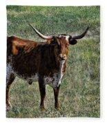 Texa Longhorn Fleece Blanket