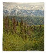 The Alsek Mountains Along The Haines Fleece Blanket