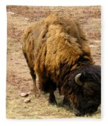 The American Buffalo Fleece Blanket
