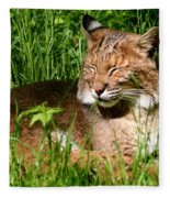 The Bobcat's Afternoon Nap Fleece Blanket