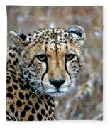 The Cheetah Stare Fleece Blanket