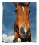 The Curious Horse Fleece Blanket