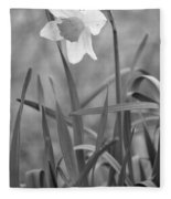 The Daffodil In Black-and-white Fleece Blanket
