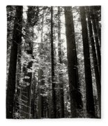 The Forest Through The Trees Fleece Blanket