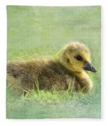 The Gosling Fleece Blanket