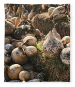 The Gourd Family Fleece Blanket