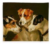 The Hounds Fleece Blanket
