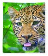 The Leopard's Tongue Fleece Blanket