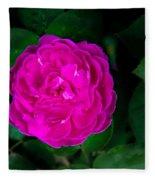 The Old Red Rose Fleece Blanket