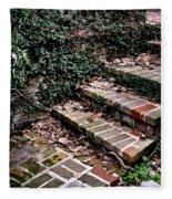 The Old Steps Fleece Blanket