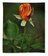 The Orange Rose Fleece Blanket