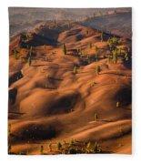 The Painted Dunes Fleece Blanket