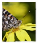 The Painted Lady And The Daisy  Fleece Blanket