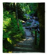 The Path To Iron Creek  Fleece Blanket