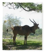 The Postcard Fleece Blanket