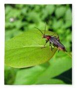 The Rednecked Bug On The Leaf Fleece Blanket