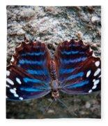 The Royal Blue Butterfly Fleece Blanket