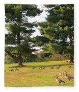 The Sunny Stroll Fleece Blanket