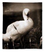 The Swan Fleece Blanket