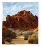 The Trail Through The Valley Fleece Blanket