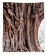 The Twisted And Gnarled Stump And Stem Of A Large Tree Inside The Qutub Minar Compound Fleece Blanket