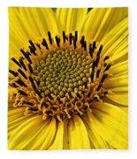Thinleaf Sunflower Fleece Blanket