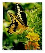 Thoas Swallowtail #1 Fleece Blanket