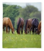 Thoroughbred Horse, Ireland Fleece Blanket