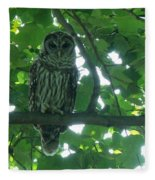 Three Barred Owls Fleece Blanket