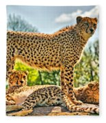 Three Cheetahs Fleece Blanket