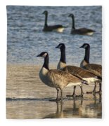 Three Geese Fleece Blanket