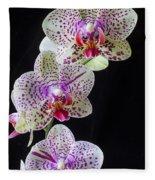 Three Orchids Fleece Blanket