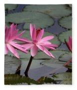 Three Sweet Pink Water Lilies Fleece Blanket