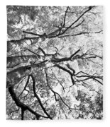 Three Trees Reach For The Sky Black And White Fleece Blanket
