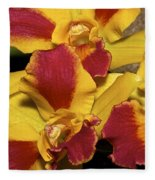 Three Yellow And Red Orchids Fleece Blanket