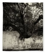 Through The Wall Bw Fleece Blanket