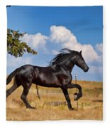 Thunderheads Fleece Blanket